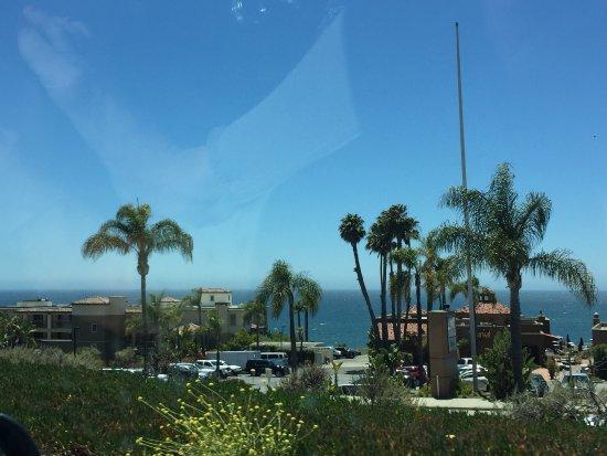 Ocean Palms Motel: photo0.jpg