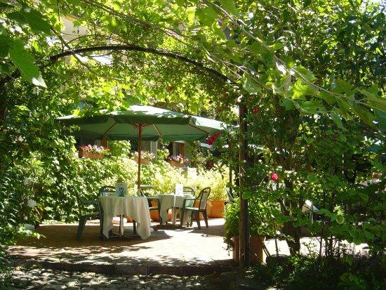 Seehotel Baren Brienz : Verwunschener Garten