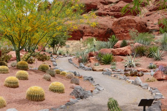 St. George, UT: Pathways wind throughout Red Hills Desert Garden
