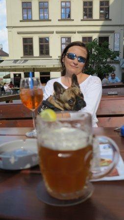 U vsech certu: Dog friendly boozer....