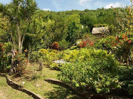 Trois-Ilets, Martinique: FB_IMG_1497279066944_large.jpg