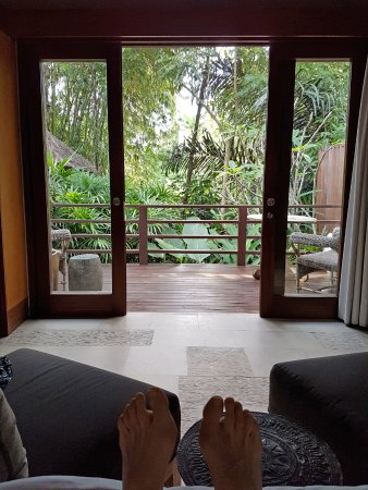 The Purist Villas and Spa: View from your bed of the jungle