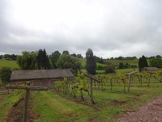 Newent, UK: Accommodation Lodge