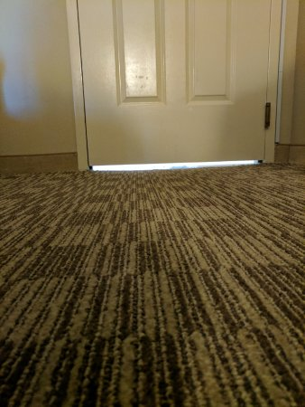Embassy Suites by Hilton Orlando Downtown: Noise from the indoor rotunda, check space between door and carpet.