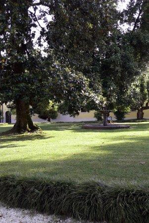 Villa Varda: Una delle belle radure