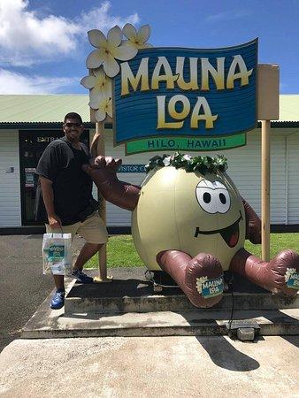 Keaau, Hawái: Mauno Loa Macadamia Nut Factory