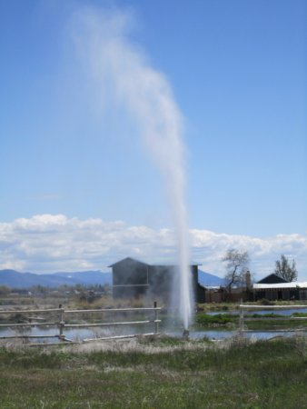 Old Perpetual: geyser near Lakeview OR