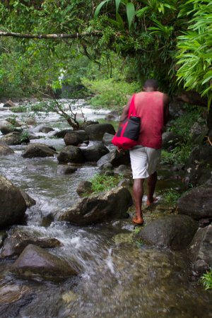 Lavena Coastal Walk: The trail is in the water some of the time, and at the end, it is a swim
