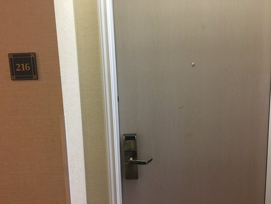 Comfort Suites Chincoteague: Chocolate, blood, booger? Who knows but they won't clean it.
