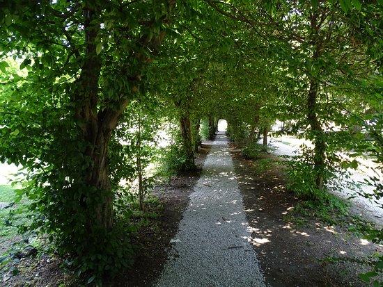 Battaglia Terme, إيطاليا: la galleria verde nel parco