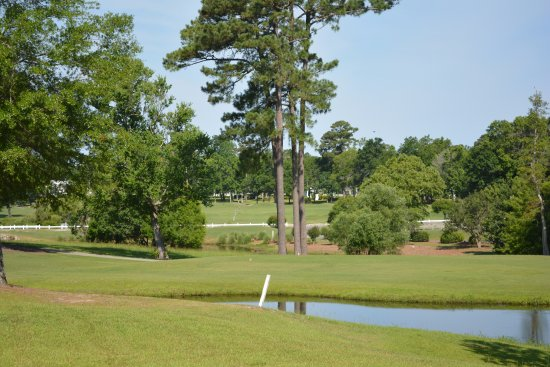 Sea Trail Golf Resort & Conference Center: Golf Course