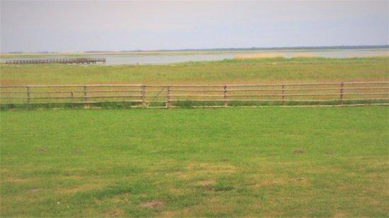 Rezydencja Nad Jeziorem Lebsko: Widok z tarasu