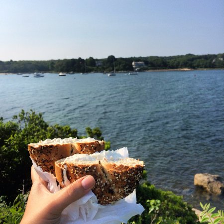 Cape Cod Bagel Co: Everything w/cream cheese- brought to the beach!