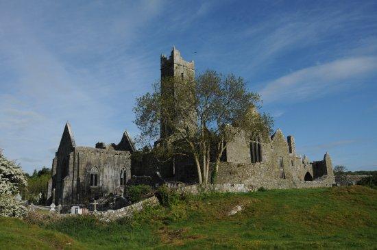 Quin, Irlanda: grave yard is still in use