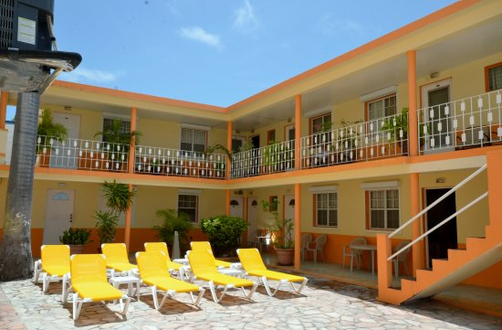 Sea View Beach Hotel: Daytime view of our Patio, free sunbeds, umbrellas and beach towels available for hotel guests