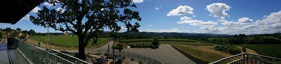 Healdsburg, CA: lovely view from balcony at Hanna