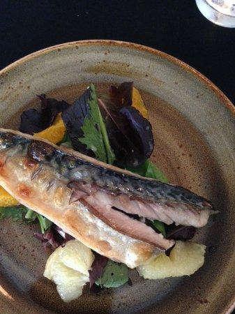 Runswick, UK: Fresh mackerel