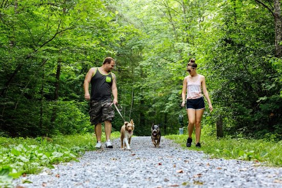 Bluefield, Западная Вирджиния: We have plenty of hiking and walking trails in our state parks!