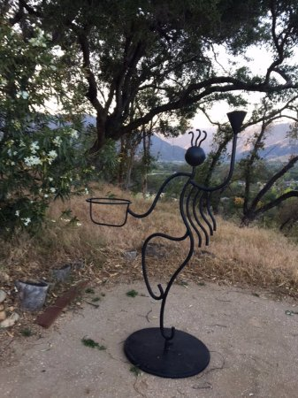 Ojai, CA: This character greeted me when I arrived my first evening.