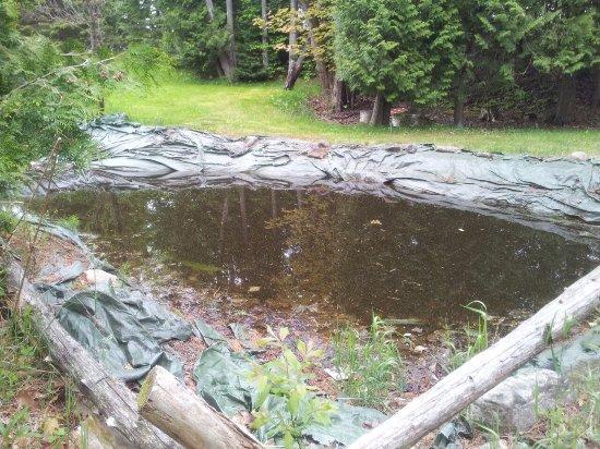 Manitoulin Island, Canadá: Teich