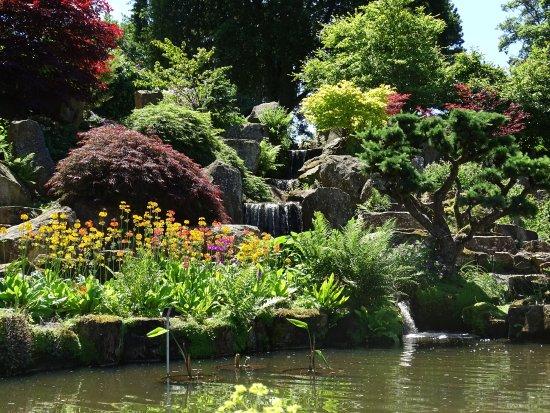 Rhs Garden Wisley Rock Gardens
