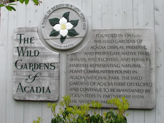 Acadia National Park Tours: included a trip to the Gardens of Acadia. Beautiful place