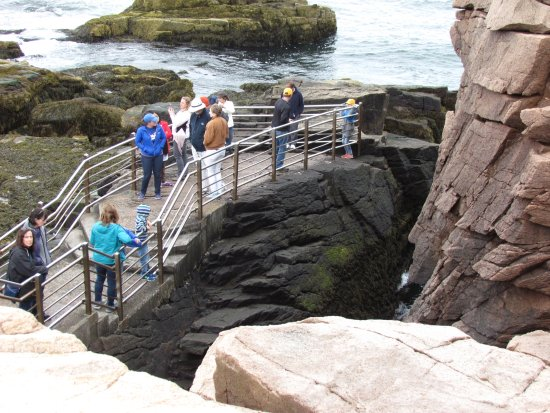Acadia National Park Tours: Thunder hole...it was not cooperating that day!