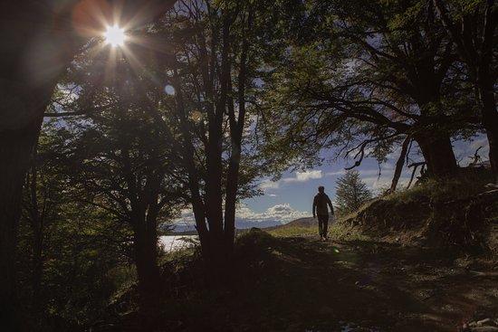 The Singular Patagonia: Landscape.