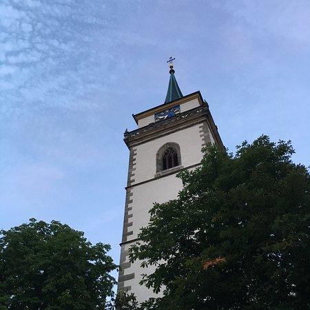 Hotel-Restaurant Schwanen: Sicht von Terrasse
