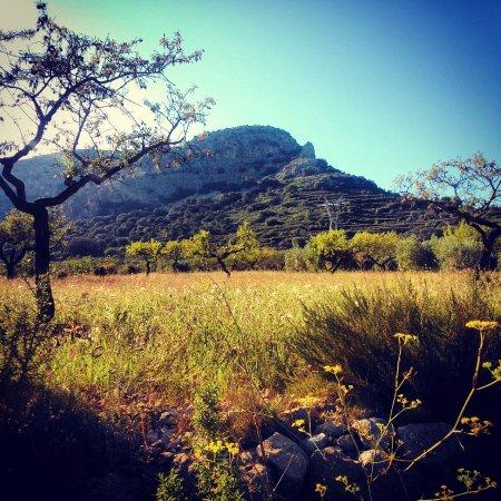 Roca de les Vinyetes, Benassal.  Foto: Josep Ferrer Roig.