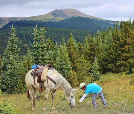 San Cristobal, NM: Rio Grande Stables Kid friendly Hourly Horseback Rides