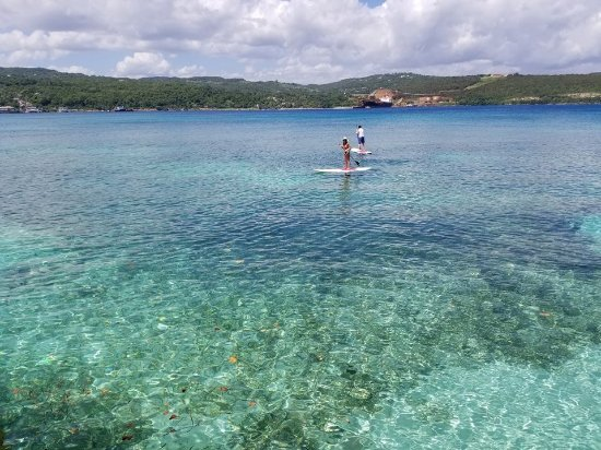Paddleboarding in Discovery Bay