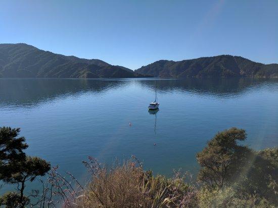 Arthurs Bay, Neuseeland: IMG_20170611_113210_large.jpg