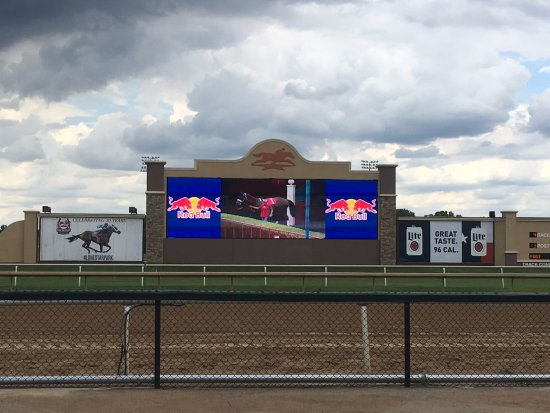Lone Star Park: Watch the race from the big screen until they round the corner towards home!