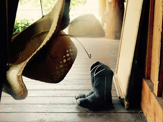 Sylvan Dale Guest Ranch: after the ride, enjoy one of the comfortable rockers on the main porch.