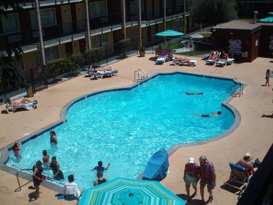 Mardi Gras Hotel & Casino : The Pool Was Great!
