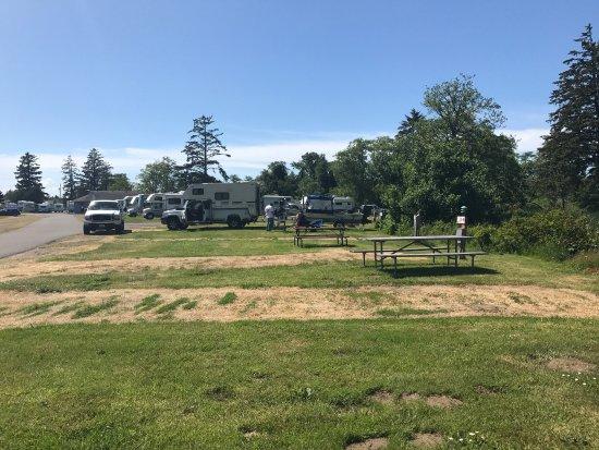 Warrenton, OR: Not a happy camper!!! Camping spots dirty & not level, strange backpack &garbage, molehills & bi
