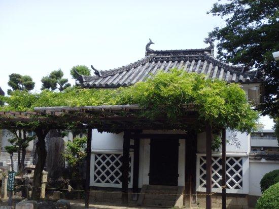 Fujiidera, ญี่ปุ่น: 本堂脇にある一風変わった屋根(鯱が乗っている)のお堂?