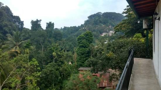 Green Villa Kandy: View of the surrounding greenery from the balcony on the top floor