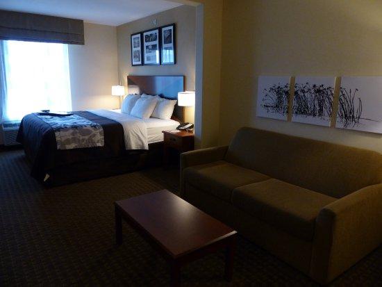 Idaho Falls Sleep Inn - King Room - Picture of Sleep Inn & Suites, Idaho  Falls - Tripadvisor