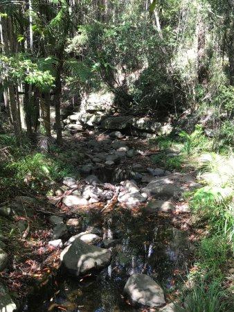 Buderim, Australia: So peaceful