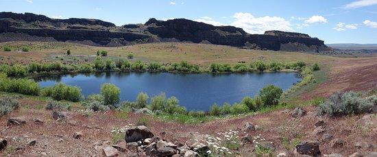 Quincy, واشنطن: Susan Lake At Ancient Lake SP