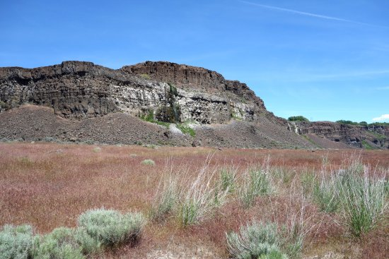 Quincy, WA: Basalt Cliffs At Ancient Lake SP