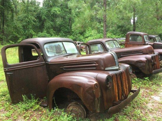 Crawfordville, FL: Dead trucks