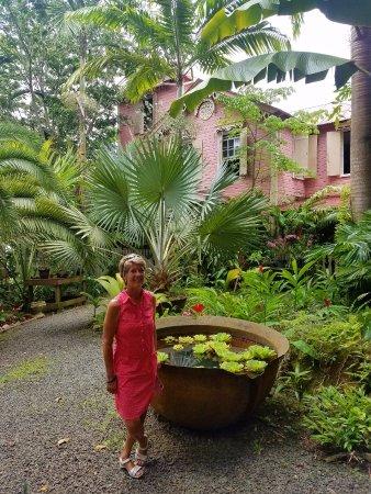 The Pink Plantation House: Entrance