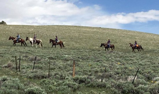 The Lazy L&B Ranch: Talented Wranglers leading horseback riding