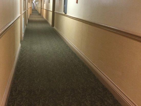 Tapijt Voor Gang : Vuil stinkende gang met vies tapijt foto van mammoth mountain