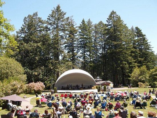 Azalea Park: Ragtime concert