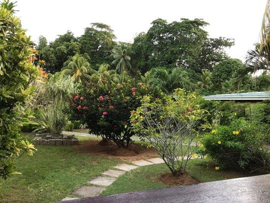 Casa De Leela: photo0.jpg