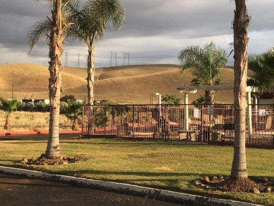 Westley, Califórnia: Motel 6 views